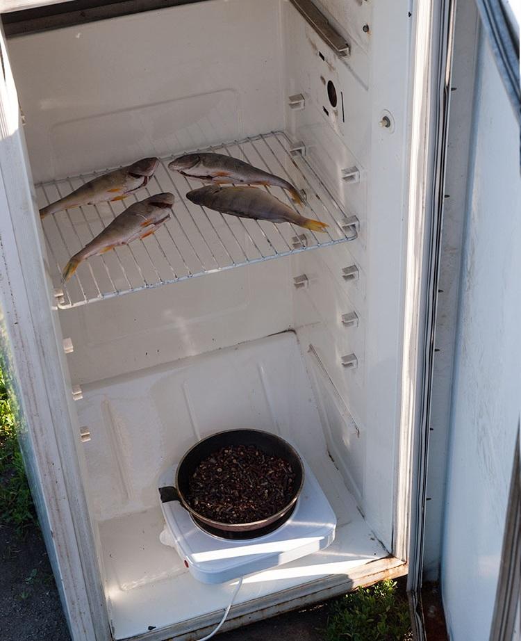 Из холодильника