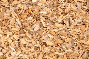 Щепа лиственных пород древесины