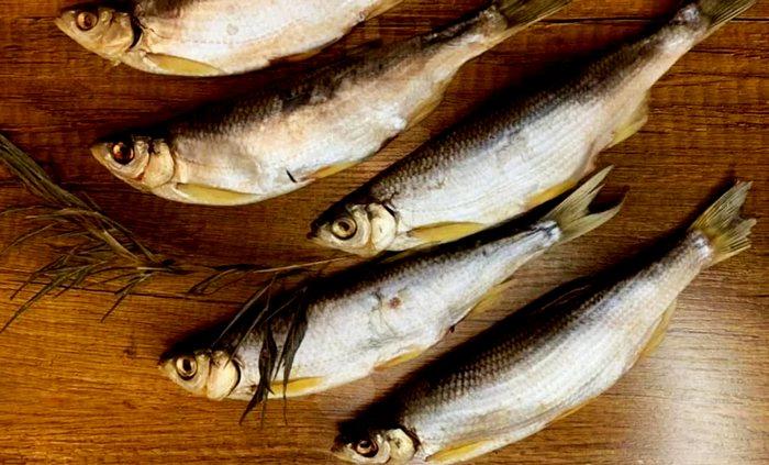 вкусная рыба шемая